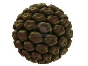 Close up of an HPV virus